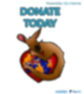 Donation Panel.png