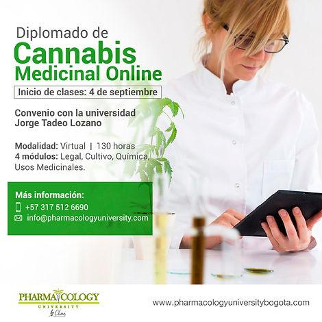 post diplomado virtual 2020.jpg