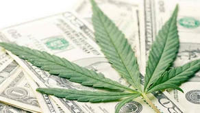 Los precios del cannabis medicinal