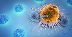 Los terpenos y el sistema inmune
