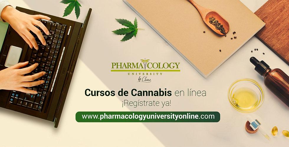 portada_cursos_español-1.jpg