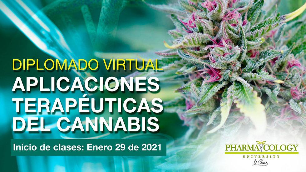 banner diplomado virtual.jpg