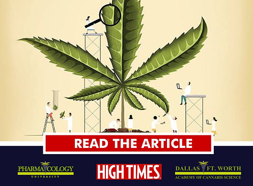 cannabis,academy,medicinal,medical,course,training,certification,dallas,fort worth