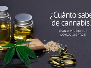 Prueba tus conocimientos del cannabis