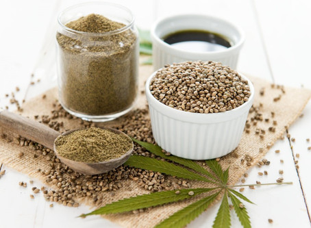 Include Hemp in our daily diet: A good idea?