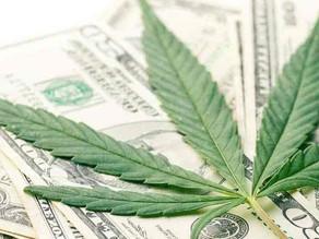 Los precios del cannabis medicinal.