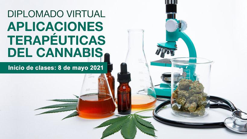 banner diplomado virtual2 (2).jpg