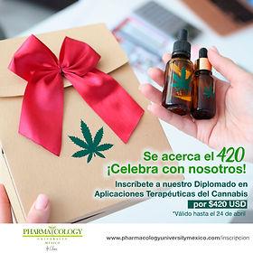 420 mexico.jpg