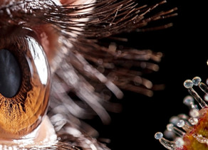 Los beneficios de tratar el glaucoma con Cannabis