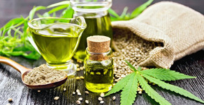 Cannabis, ¿un superalimento?