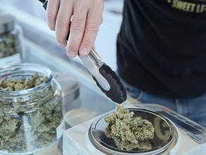 Dispensarios médicos de cannabis