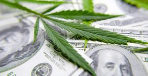 Conoce las posibilidades de negocio dentro de la Industria del Cannabis