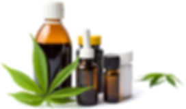 what-are-full-extract-cannabis-oils3.jpg