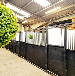 The Yard | Stables