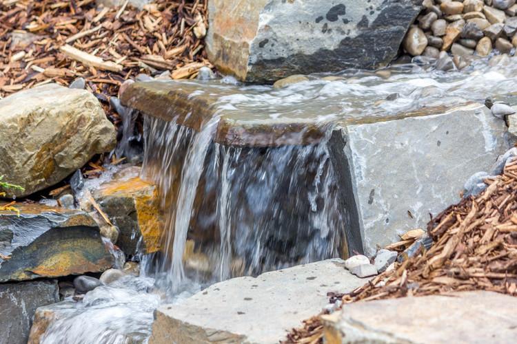 CC Water 4.jpg