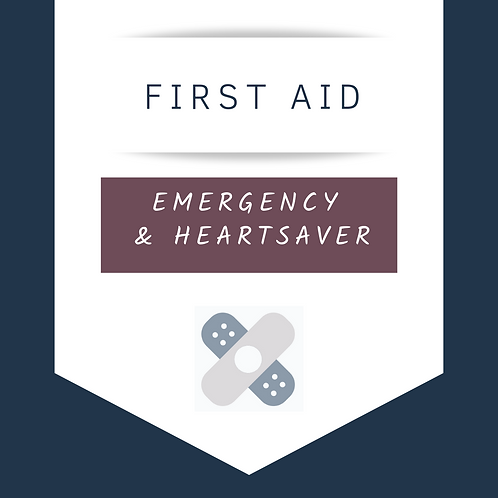 Emergency First Aid Level C