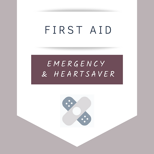 Emergency First Aid Level C (MOBILE)