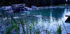 Calgary Natural Pool