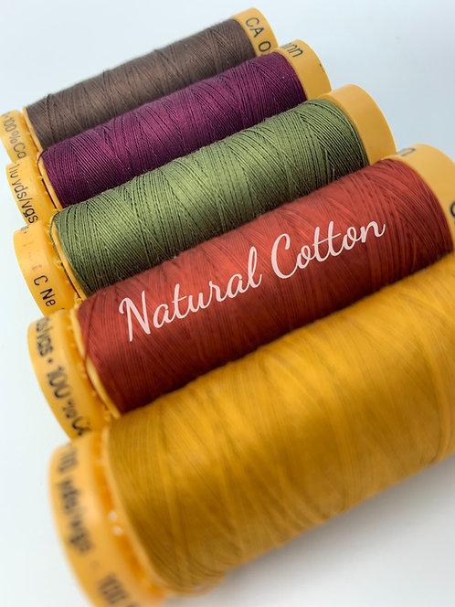 Autumn Thread Collection Set