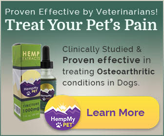 CBD Dominate Hemp Oil Extract to Treat Canine Osteoarthritis-Related Pain Study