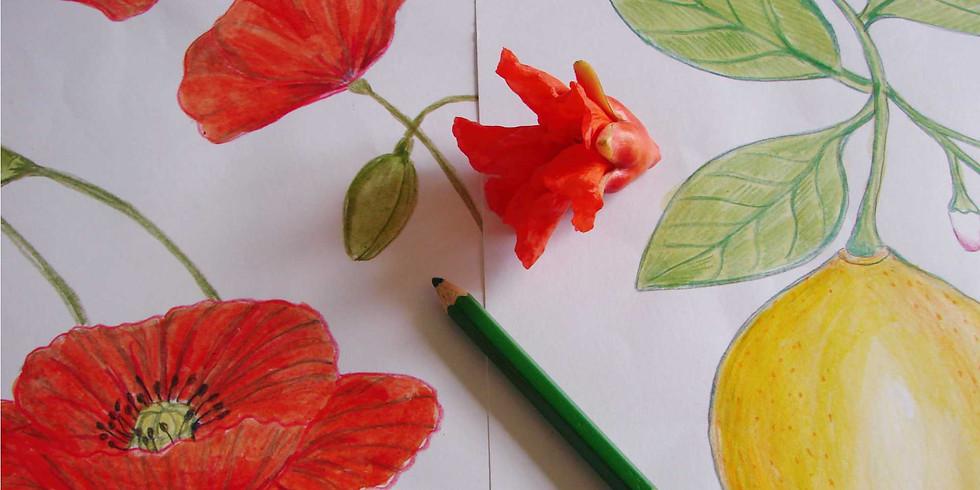 Atelier dessin 10 // Les fleurs