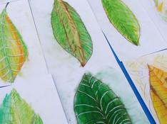 Art botanique