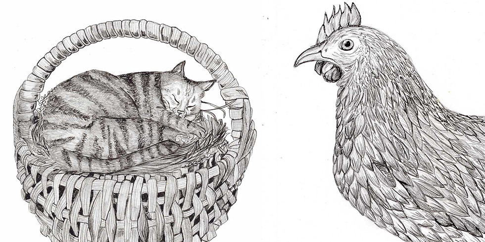Atelier dessin 03 > Les animaux domestiques