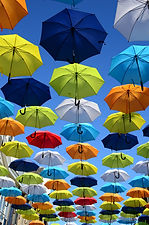 Like umbrellas, franchises often look the same but they are all unique.