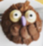 owl cupcake.JPG