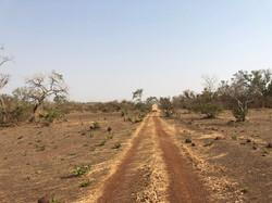African Bush Mobile Lab
