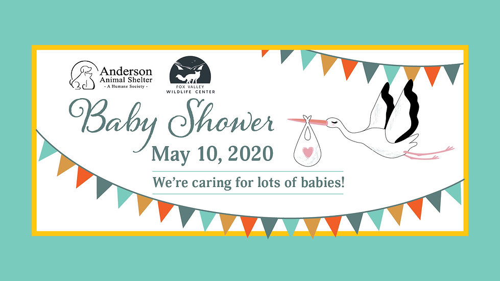 Baby_Shower_2020_AAS_FVWC_FB_Cover.jpg