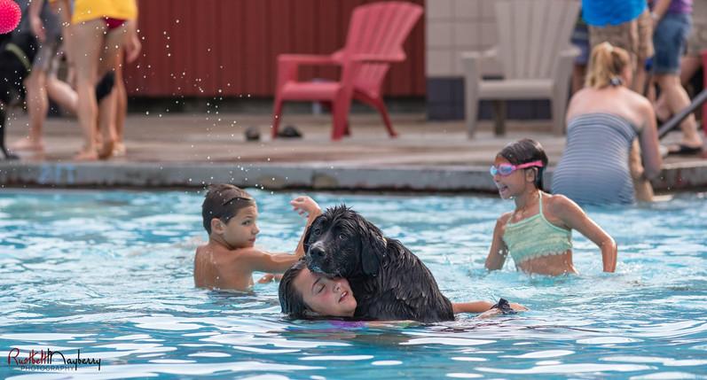 Bark @ The Park Dog Swim