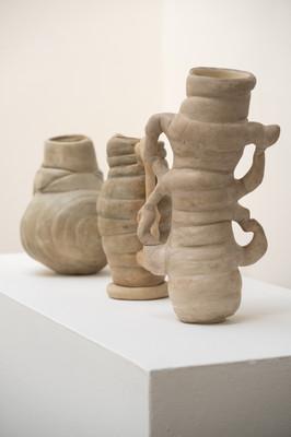 Against the Grain Exhibition_Tessa Silva_Chub Vases_(c) George Baggaley.jpg