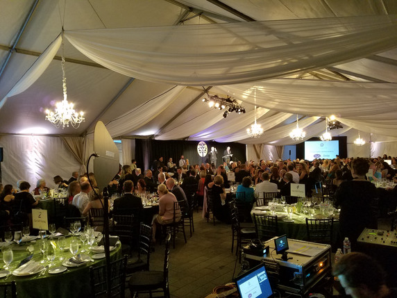 S.A.Y. Fundraiser 2018