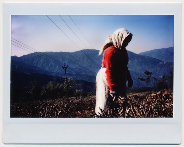 Darjeeling, West Bengal.