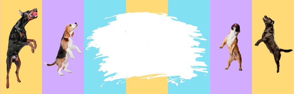 Website%20Banner_edited.jpg