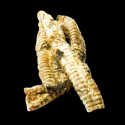 Trachea Long (1 Piece)