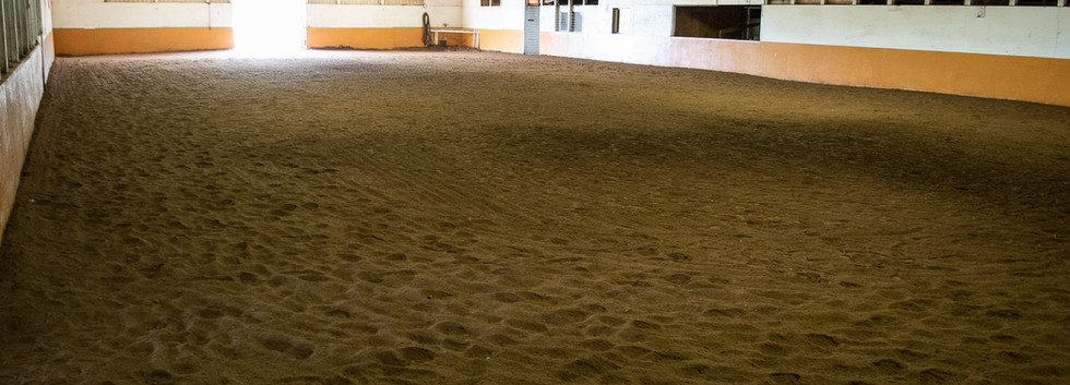 Large Indoor Arena