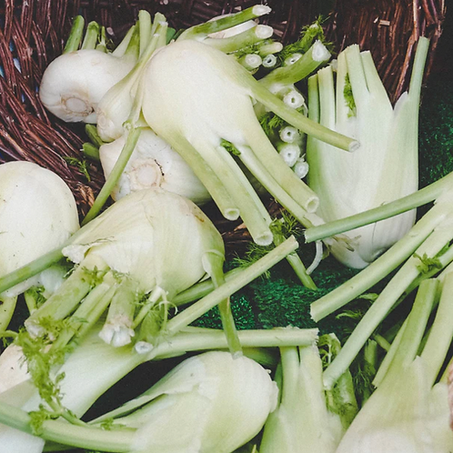 Fennel Bulbs ( Fresh)