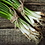 Thumbnail: Spring Onions ( 6 stems per bunch)
