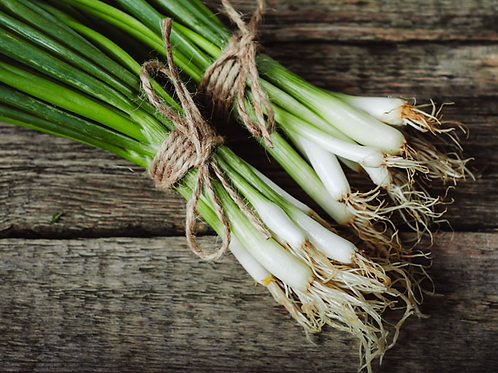 Spring Onions ( 6 stems per bunch)