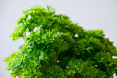 Parsley Bunched