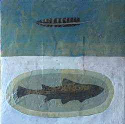 Feather and Fish, 24_x24,_ oil, encausti