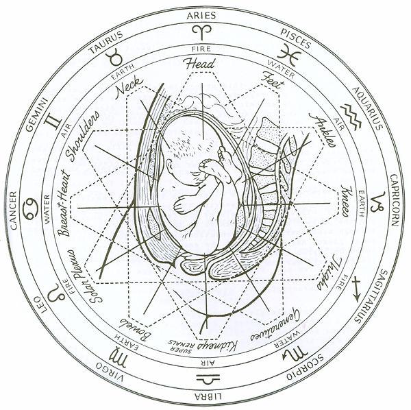 Polaritetsterapi og astrologi