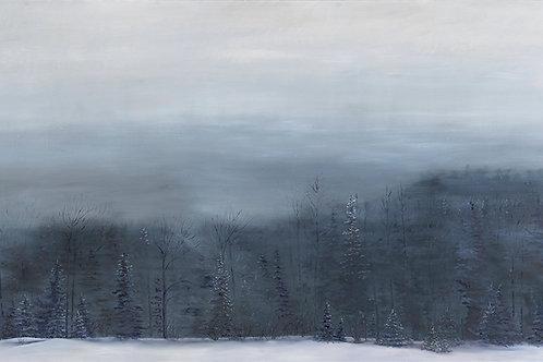 Contemplation- February 2020