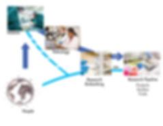 Biospecimen accrual process, biobank, bbrs biobanking, biospecimen, pathology, translational medicine, cancer research, bccrc, bc cancer agency, human