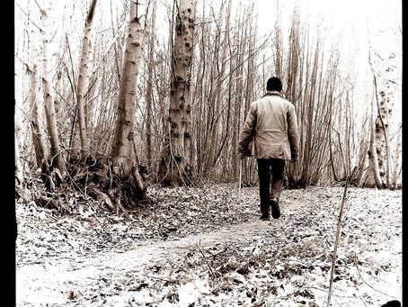 On the Art of Walking