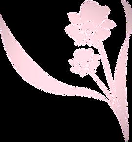 flower-1632607_1280_edited_edited_edited