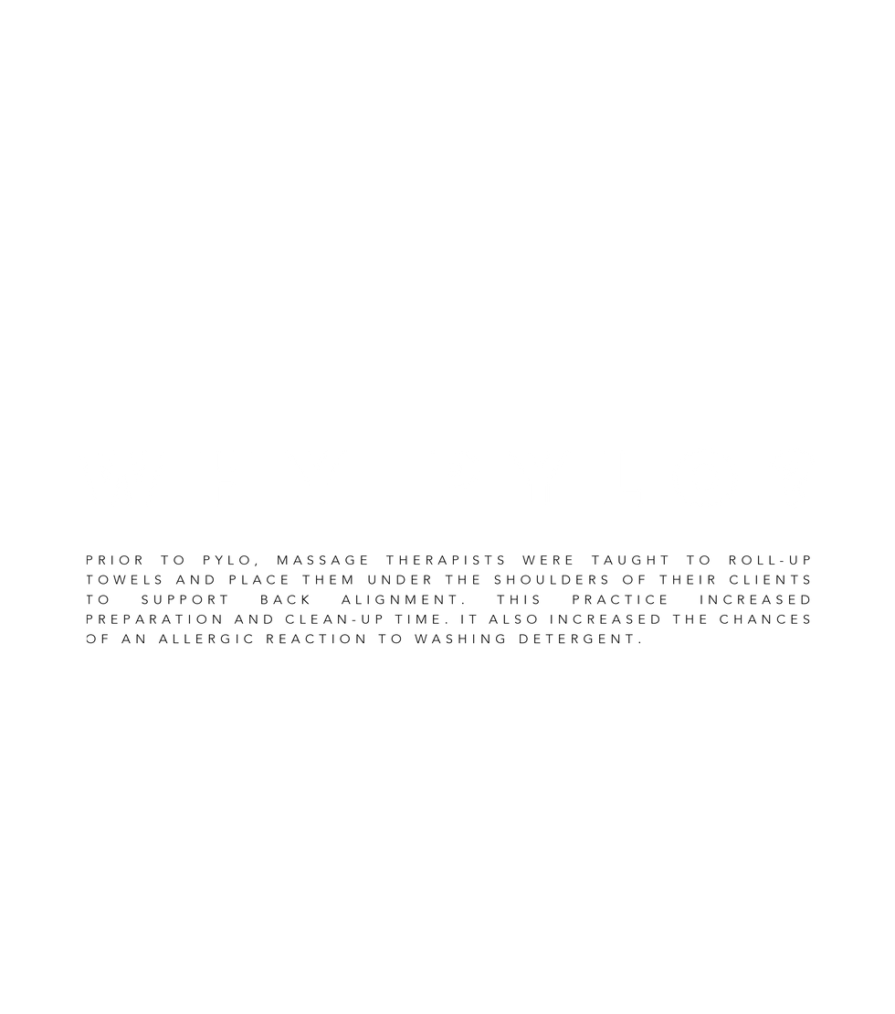 why pylo? txt.png