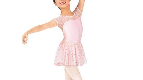 Girls Heart Mesh Ballet Skirt